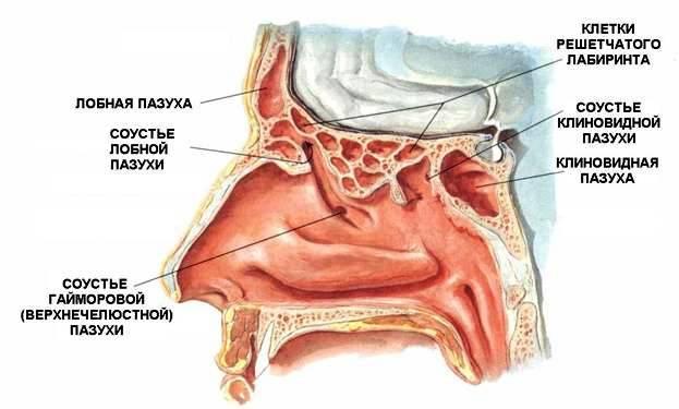 Лечение боли в спине в бутово